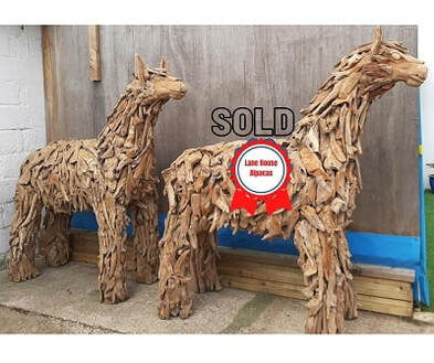 driftwood alpacas made from teak tree roots