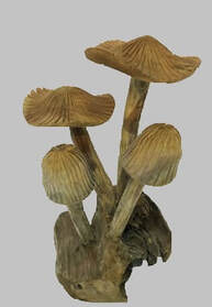 table top wooden mushrooms
